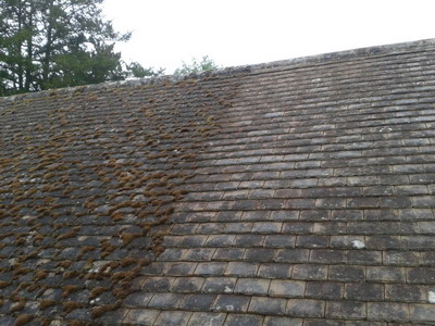 Roof moss treatment in the South East